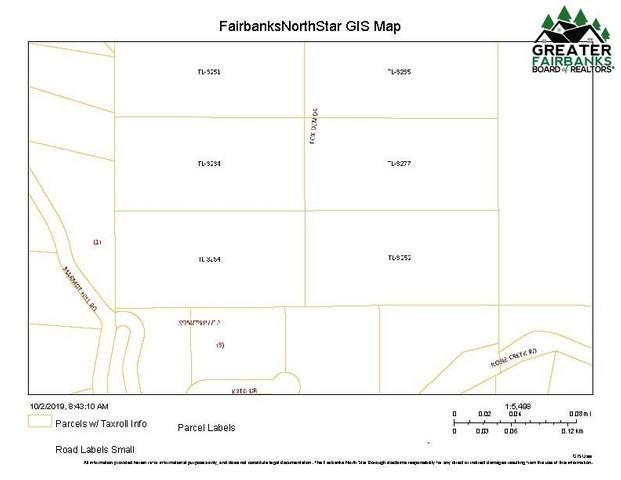 NHN Fox Den Drive, Fairbanks, AK 99709 (MLS #142262) :: Powered By Lymburner Realty