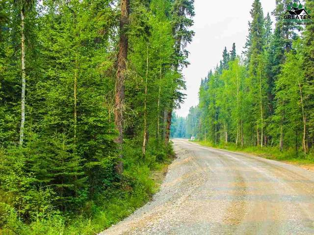 Tract A S Blanket Boulevard, North Pole, AK 99705 (MLS #145904) :: Powered By Lymburner Realty
