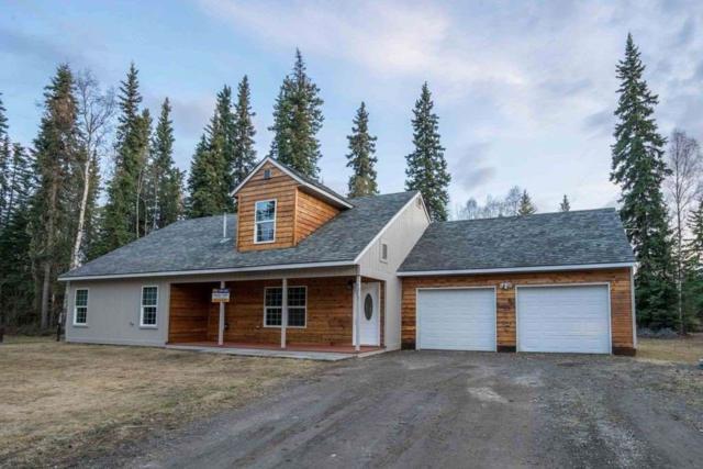3237 Ralph Turnaround, North Pole, AK 99705 (MLS #136871) :: Madden Real Estate