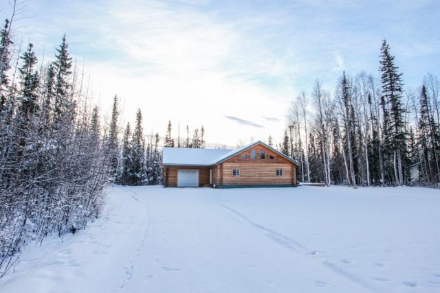 3805 Peter Hawk Avenue, North Pole, AK 99705 (MLS #137171) :: Madden Real Estate