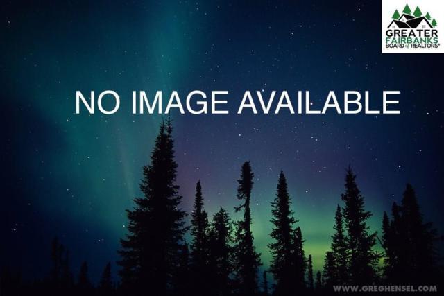NHN Ptarmigan Drive, Delta Junction, AK 99737 (MLS #138211) :: Powered By Lymburner Realty