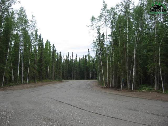 Tract E S Blanket Boulevard, North Pole, AK 99705 (MLS #135650) :: RE/MAX Associates of Fairbanks