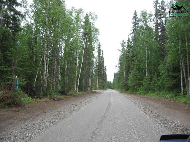 Tract D S Blanket Boulevard, North Pole, AK 99705 (MLS #135651) :: RE/MAX Associates of Fairbanks