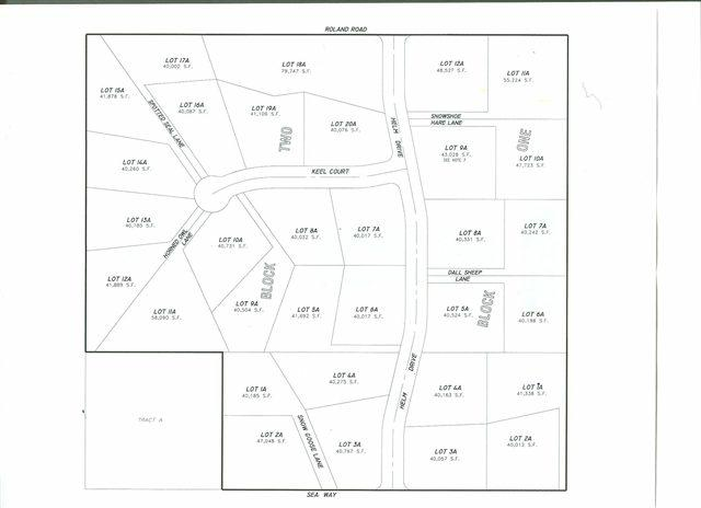 Lot 13A Horned Owl Lane, Fairbanks, AK 99709 (MLS #114009) :: Madden Real Estate