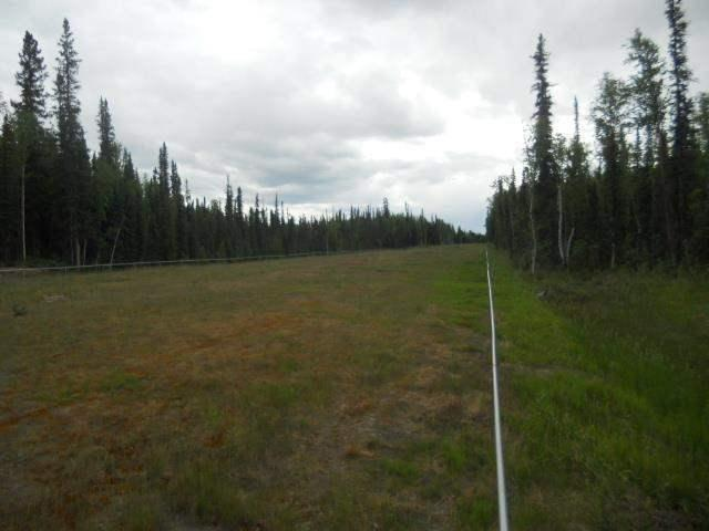 LOT 10 Timber Trail, North Pole, AK 99705 (MLS #122771) :: Powered By Lymburner Realty