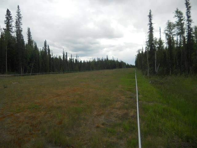 NHN Timber Trail, North Pole, AK 99705 (MLS #125637) :: Powered By Lymburner Realty