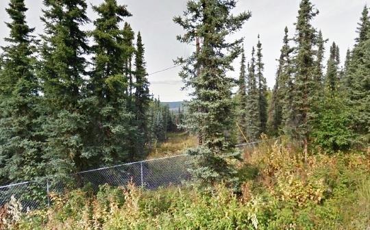 nhn Whistling Swan Drive, Fairbanks, AK 99712 (MLS #130541) :: Madden Real Estate
