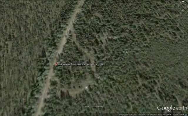 NA Old Valdez Trail, Salcha, AK 99714 (MLS #130735) :: Madden Real Estate