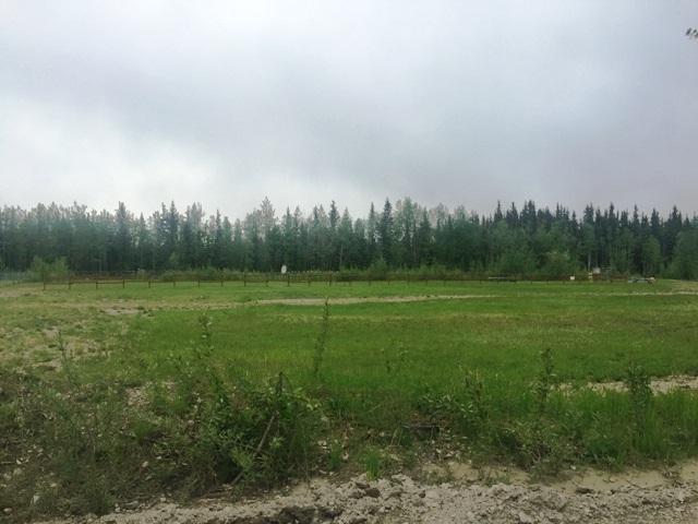 3478 Silverleaf Avenue, North Pole, AK 99705 (MLS #131242) :: Madden Real Estate