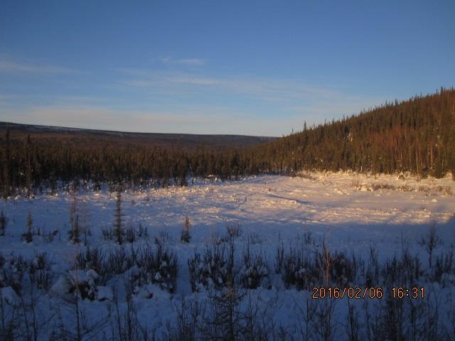 NHN Elliott Highway, Fairbanks, AK 99712 (MLS #133825) :: Madden Real Estate