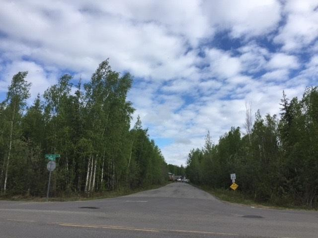 nhn Chena Small Tracts Road, Fairbanks, AK 99709 (MLS #134325) :: Madden Real Estate