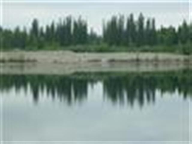 lot 9 Ladessa Road, North Pole, AK 99712 (MLS #134420) :: Madden Real Estate