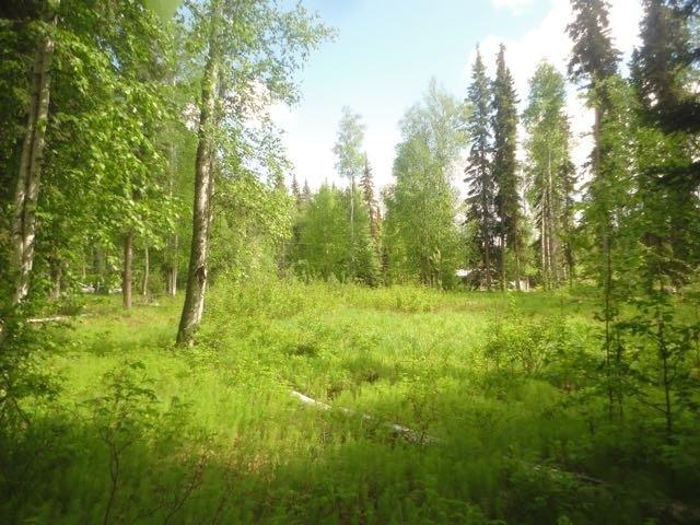 257 Bote, Fairbanks, AK 99712 (MLS #134576) :: Madden Real Estate