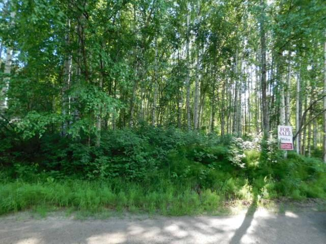 NHN Fair Place, Fairbanks, AK 99701 (MLS #134612) :: Madden Real Estate