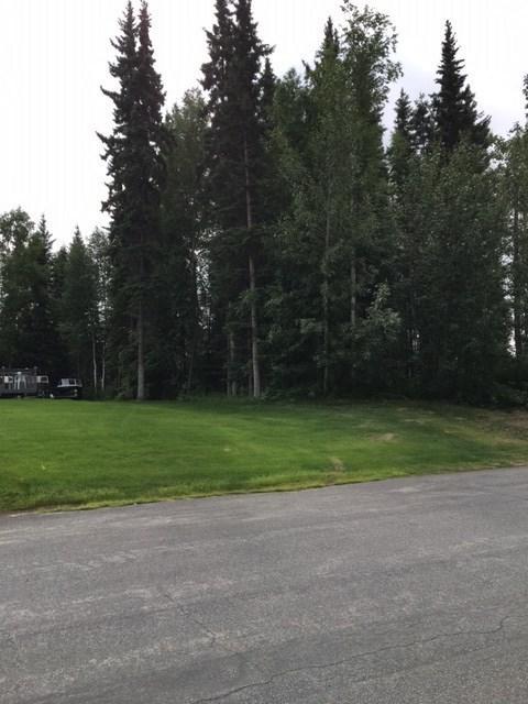 NHN Chief Alexander Drive, Fairbanks, AK 99701 (MLS #134807) :: Madden Real Estate