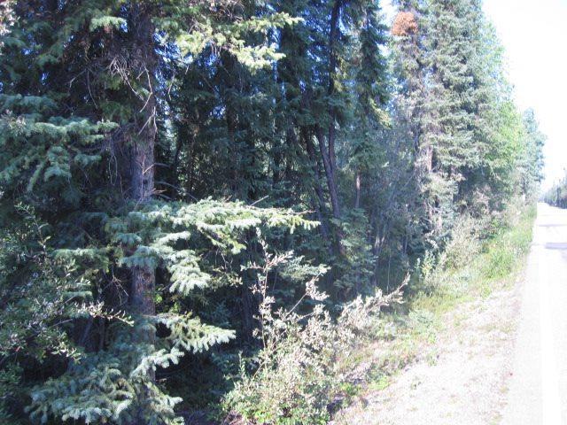 NHN S Harding Lake Road, Harding Lake, AK 99714 (MLS #134865) :: Madden Real Estate