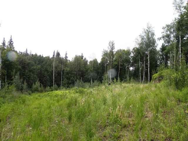 3155 Hillary Avenue, Fairbanks, AK 99709 (MLS #135404) :: Madden Real Estate