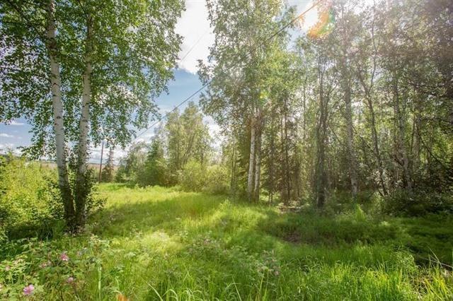 NHN Moosewood Circle, Fairbanks, AK 99712 (MLS #135798) :: Madden Real Estate
