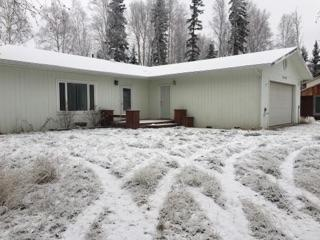 3010 Armistice Street, North Pole, AK 99705 (MLS #135877) :: Madden Real Estate