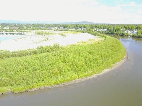 NHN Chena River, Fairbanks, AK 99709 (MLS #136343) :: Madden Real Estate