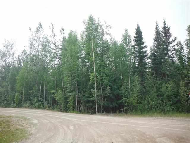 2445 Caddis Court, North Pole, AK 99705 (MLS #136385) :: Madden Real Estate