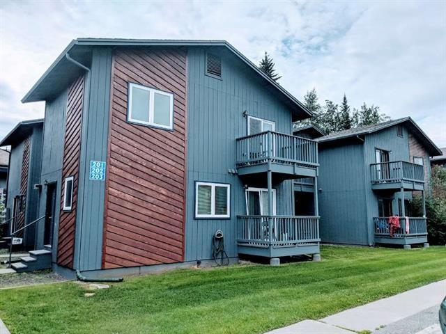 1018 Dogwood Street, Fairbanks, AK 99709 (MLS #138635) :: Madden Real Estate