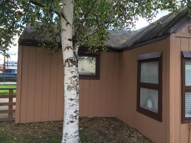 1534 Stacia Street, Fairbanks, AK 99701 (MLS #138670) :: RE/MAX Associates of Fairbanks