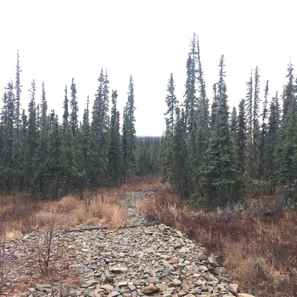 NHN Vanwood Trail - Photo 1