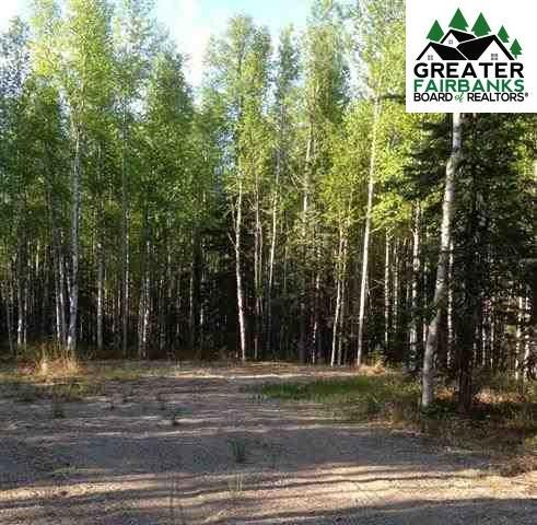 L7 Janie Lane, Delta Junction, AK 99737 (MLS #139670) :: Madden Real Estate