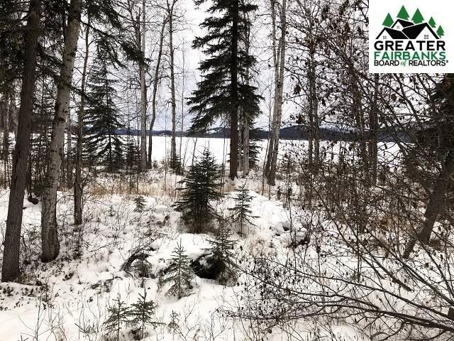 NHN Volkmar Lake, Delta Junction, AK 99737 (MLS #139771) :: RE/MAX Associates of Fairbanks
