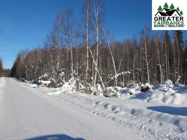 nhn Bottles Street, Fairbanks, AK 99701 (MLS #139774) :: Madden Real Estate