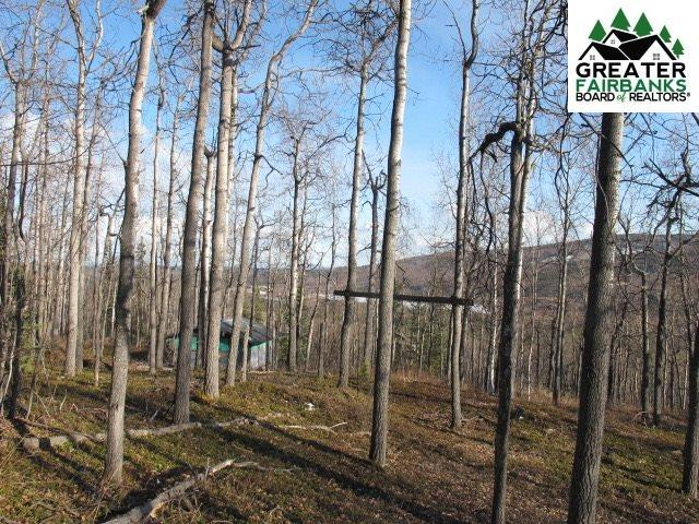 3854 Frenchman Road, Fairbanks, AK 99709 (MLS #140607) :: Madden Real Estate