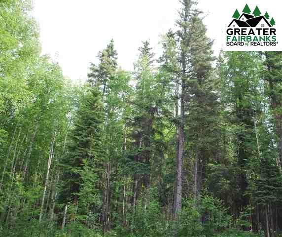 1538 North Rader Drive, Fairbanks, AK 99709 (MLS #141092) :: Powered By Lymburner Realty