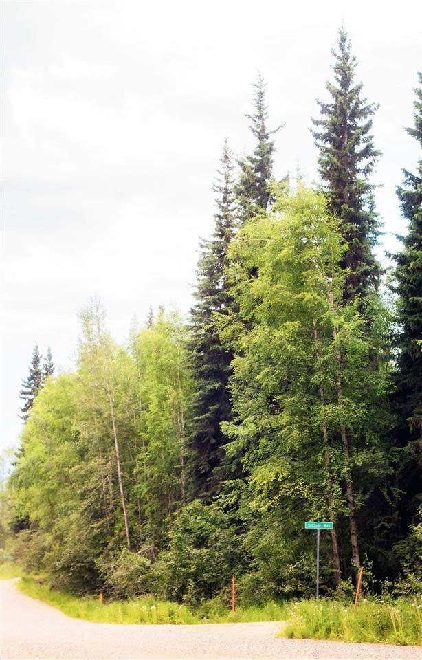 NHN Ski Boot Hill Road, Fairbanks, AK 99709 (MLS #141175) :: Madden Real Estate