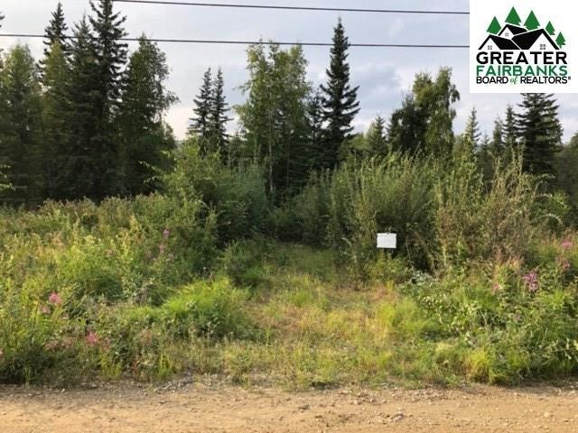 1035 Water Thrush Drive, Fairbanks, AK 99712 (MLS #141756) :: Madden Real Estate