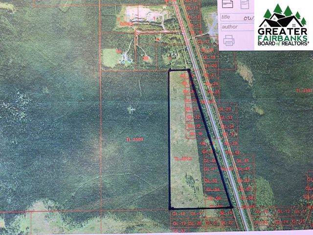 Richardson Highway, Salcha, AK 99708 (MLS #141824) :: Powered By Lymburner Realty