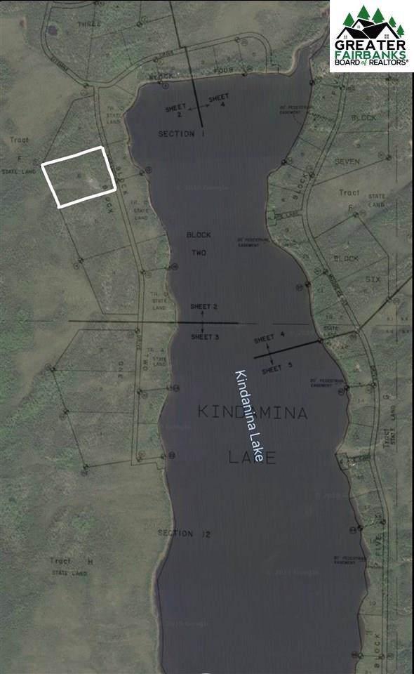 6 Kindamina Lake, Manley Hot Springs, AK 99756 (MLS #141887) :: Madden Real Estate