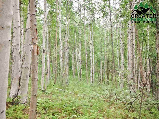 339 Snowy Owl Lane, Fairbanks, AK 99712 (MLS #143461) :: Madden Real Estate