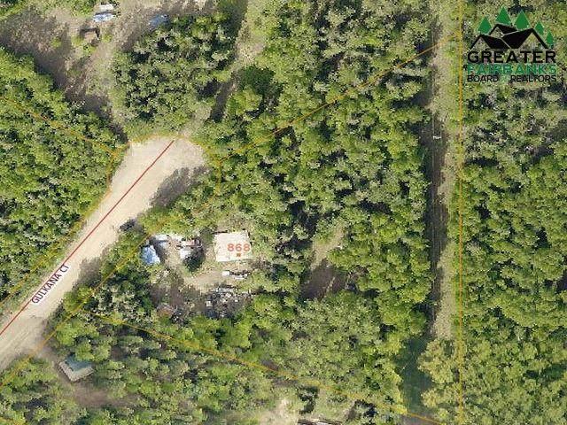 868 Gulkana Court, Fairbanks, AK 99709 (MLS #143916) :: Powered By Lymburner Realty
