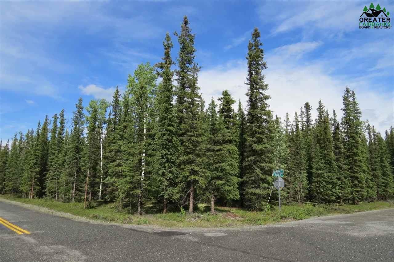 1169 Sundog Trail - Photo 1