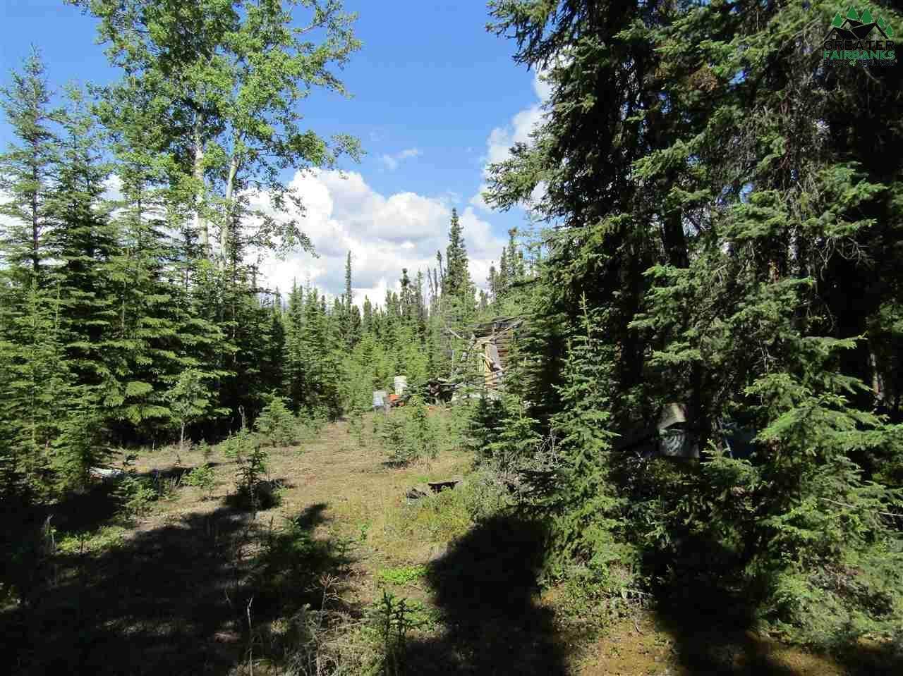 T5B3 Spruce Road - Photo 1