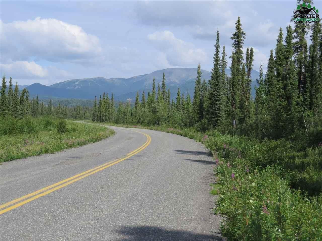 3 mile Nabesna Road - Photo 1