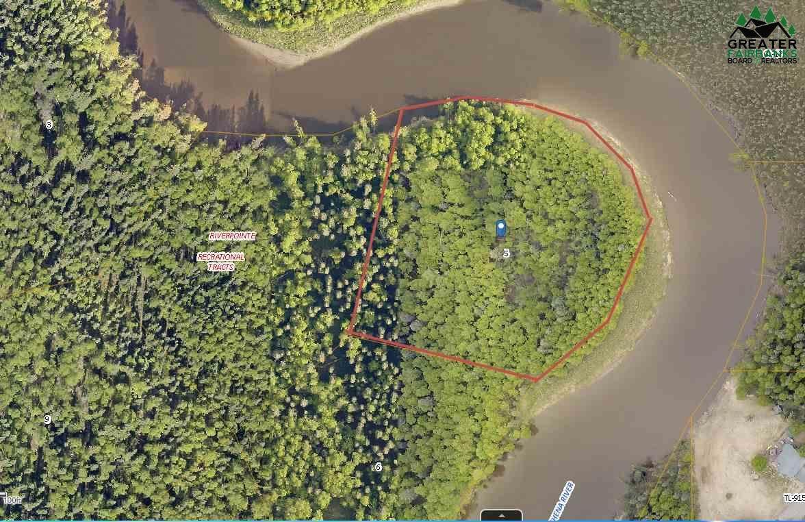Lot 5 Chena River - Photo 1