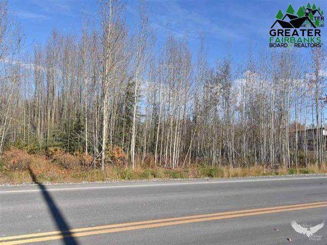 nhn Richardson Highway, North Pole, AK 99705 (MLS #145363) :: Powered By Lymburner Realty