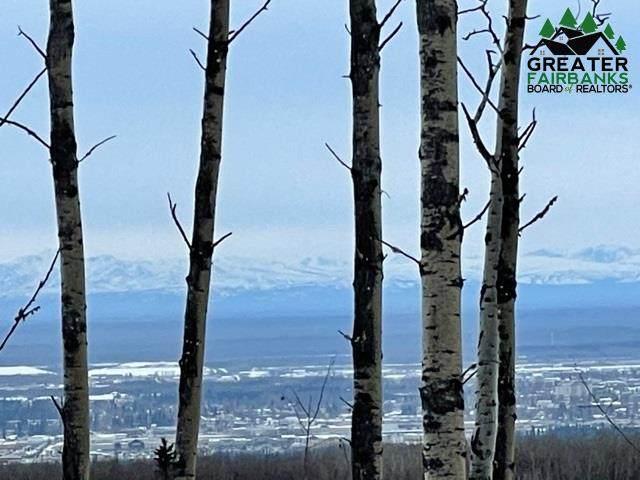 1300 Donna Drive, Fairbanks, AK 99712 (MLS #145549) :: RE/MAX Associates of Fairbanks
