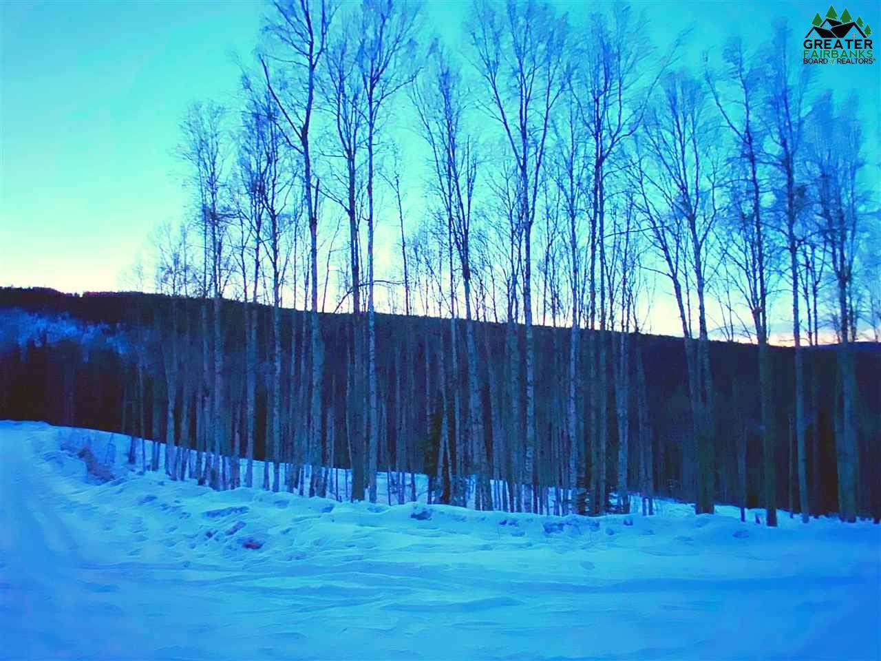 1529 Tall Birch Lane - Photo 1