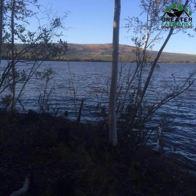 NHN Minto Lake - Photo 1