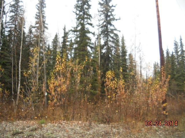 Lot 16 Nimbus Court, North Pole, AK 99705 (MLS #126487) :: Madden Real Estate