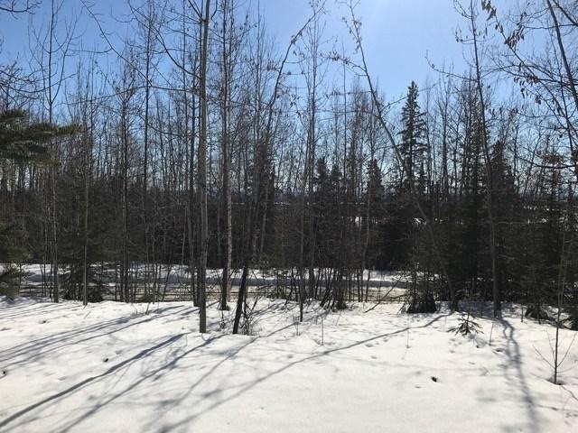 3420 Reeburgh Drive, Fairbanks, AK 99709 (MLS #131489) :: Madden Real Estate