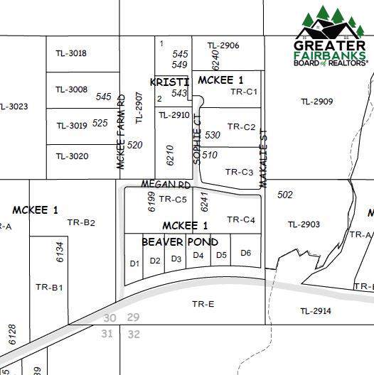 Lot D-6 Chena Hot Springs Road, Fairbanks, AK 99712 (MLS #131495) :: RE/MAX Associates of Fairbanks